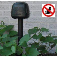 gegen Katzenkot
