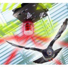 repulsif oiseaux QuadBlaster QB-4