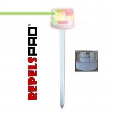 Laser Beam Vert a Energie Solaire + LED Rouge Repulsif Sanglier et Oiseaux